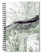 Misty Morn Spiral Notebook