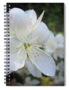 Mock Orange Blossoms Spiral Notebook