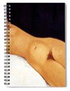 Modigliani Nude 1917 Spiral Notebook