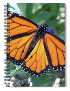 Monarch - Perfection Spiral Notebook