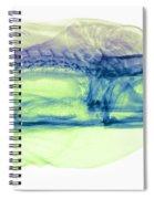 Moray Eel, Gymnothorax Funebris, X-ray Spiral Notebook