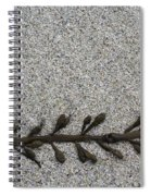 More Seaweed Spiral Notebook