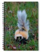 Mostly White Skunk Spiral Notebook