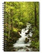 Mountain Cascade Spiral Notebook