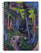 Mountain Forest Path Spiral Notebook