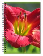 Scarlet Bloom Spiral Notebook