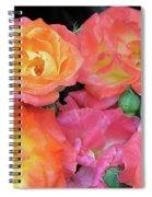 Multi-color Roses Spiral Notebook