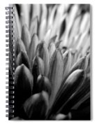 Monochrome Flower Series - Mumz The Word Spiral Notebook
