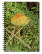 Mushroom And Moss Spiral Notebook