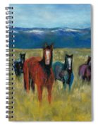 Mustangs In Southern Colorado Spiral Notebook