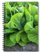Mustard Greens Spiral Notebook
