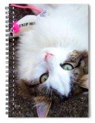 My Favorite Toy Spiral Notebook