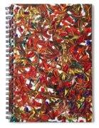 My Mind  Spiral Notebook