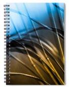 Natural Forms Spiral Notebook