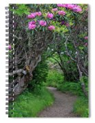 Nature's Tunnel Spiral Notebook