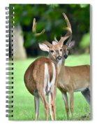 Never Look Back Spiral Notebook