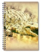 Nile River Crocodile Spiral Notebook