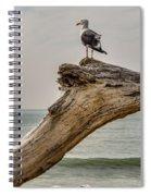 Gull On Driftwood Spiral Notebook