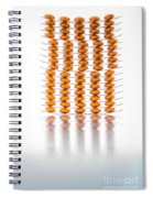 Nutritional Supplement Capsules Spiral Notebook