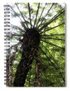 Nz Fern Spiral Notebook