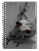 Ogling Amphibian Spiral Notebook