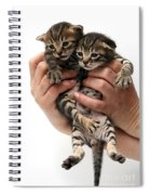 One Week Old Kittens Spiral Notebook