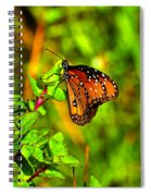 Orange Butterfly Too Spiral Notebook