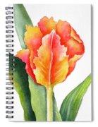 Orange Flame Spiral Notebook