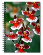Orchid 34 Spiral Notebook