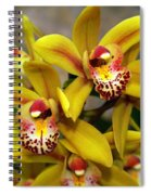 Orchid 9 Spiral Notebook