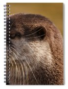 Oriental-small-clawed-otter Spiral Notebook