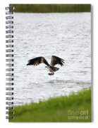 Osprey Fishing In The Afternoon Spiral Notebook
