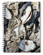 Oyster Shells Spiral Notebook