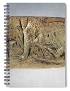 Paleolithic Tool Spiral Notebook