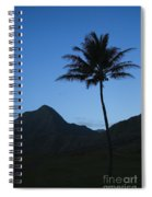 Palm And Blue Sky Spiral Notebook
