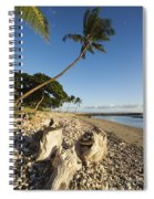 Palm And Driftwood Spiral Notebook