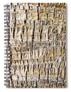 Palm Trunk Spiral Notebook