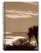 Palms In The Clouds Spiral Notebook