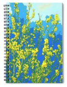 Palo Verde Spring Spiral Notebook