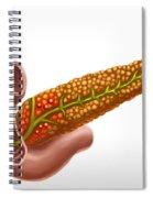 Pancreatic Cancer, Illustration Spiral Notebook