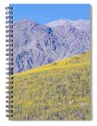 Panoramic View Of Desert Gold Yellow Spiral Notebook