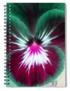 Pansy Power 71 Spiral Notebook
