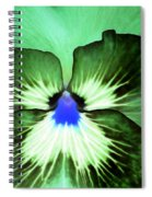 Pansy Power 75 Spiral Notebook