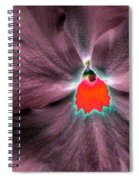 Pansy Power 80 Spiral Notebook