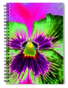 Pansy Power 82 Spiral Notebook