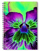 Pansy Power 84 Spiral Notebook