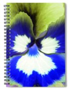 Pansy Power 85 Spiral Notebook