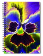 Pansy Power 87 Spiral Notebook