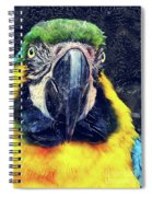 Parrot Art  Spiral Notebook