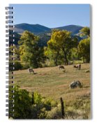 Pastural Setting Spiral Notebook